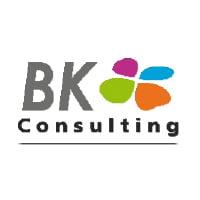 BK Consulting - City Desk