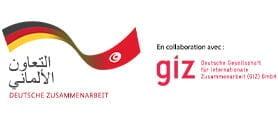 Client City Desk - GIZ
